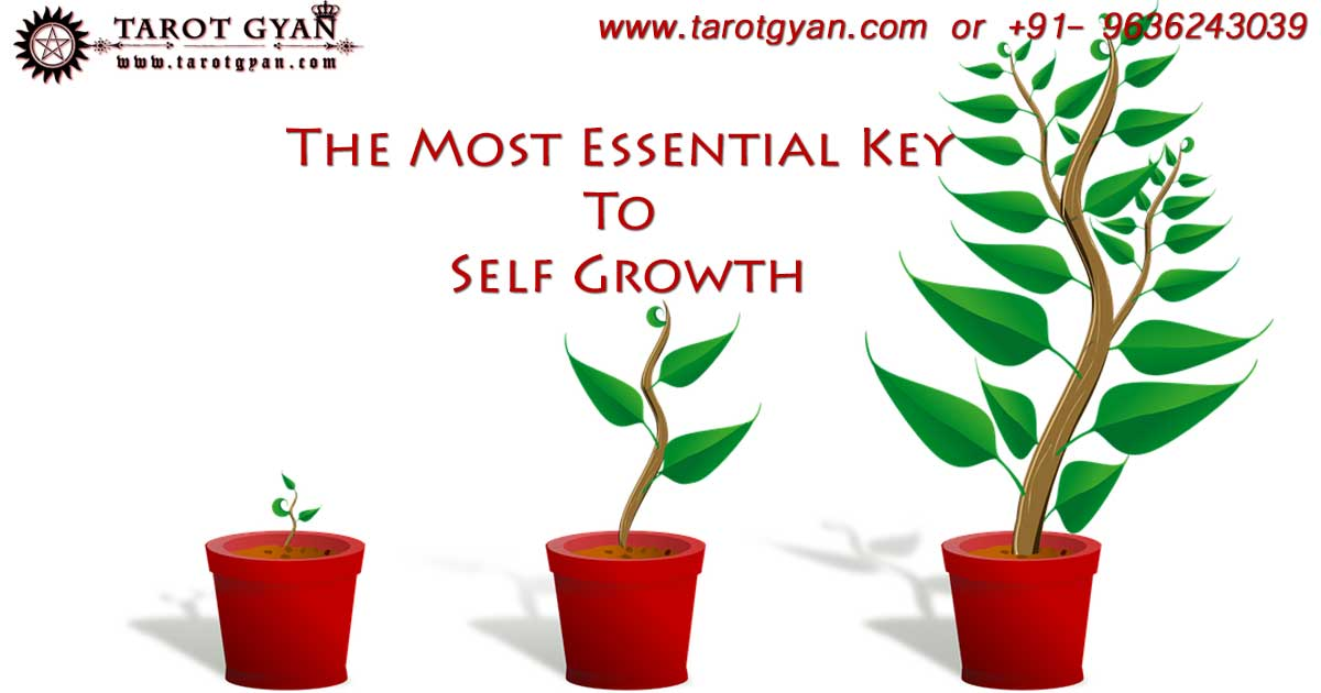 self growth tips by best astrologer in delhi
