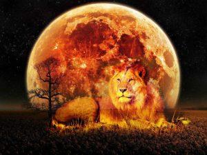 Eclipse in Zodiac Sign LEO